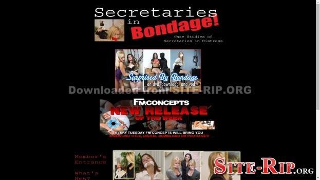 23669948_secretariesinbondage