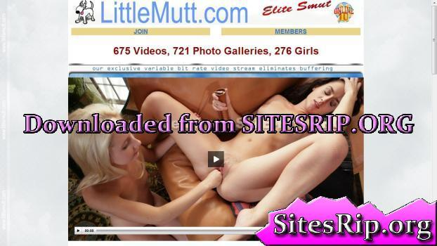 LittleMutt Pics SITERIP